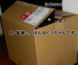 b0084186_20524819.jpg