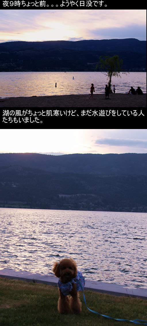 c0164491_729076.jpg