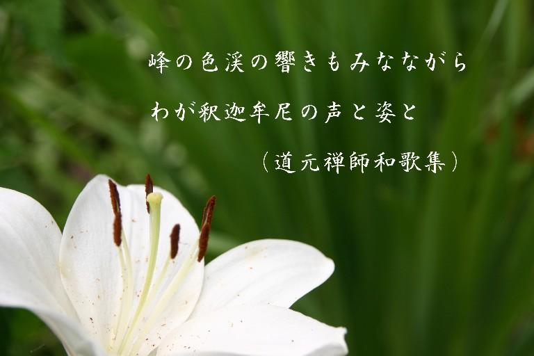 f0206452_22162273.jpg