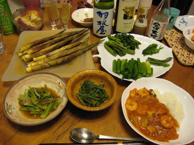 毎年恒例の有峰山菜ツアー!_e0121558_23481280.jpg