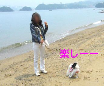 わんこと伊勢旅行!_c0199014_11295350.jpg