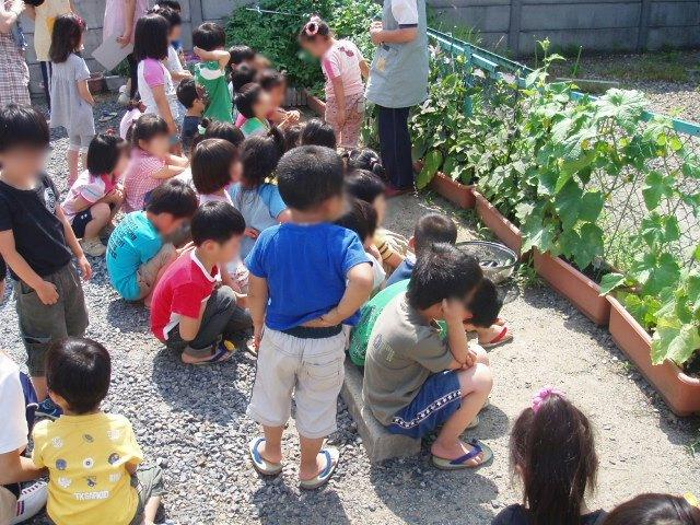 収穫_e0148419_15311592.jpg