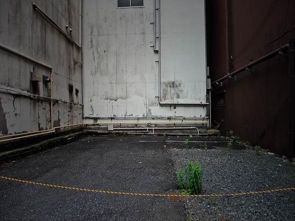日本橋本町あたり_f0077521_23113143.jpg