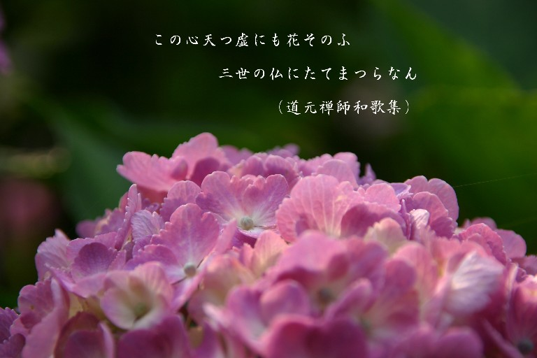 f0206452_22314226.jpg
