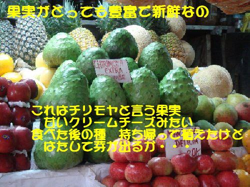 b0101991_7283022.jpg