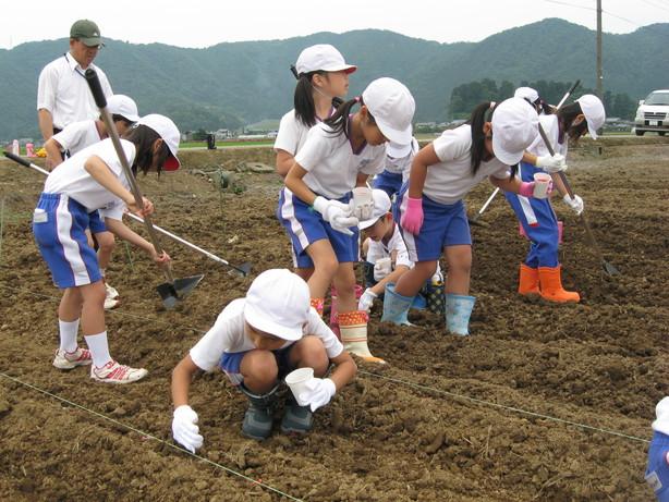 6月9日 種まき(北新庄小学校3年生の子供たち)_e0061225_81243.jpg