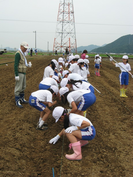 6月9日 種まき(北新庄小学校3年生の子供たち)_e0061225_862891.jpg