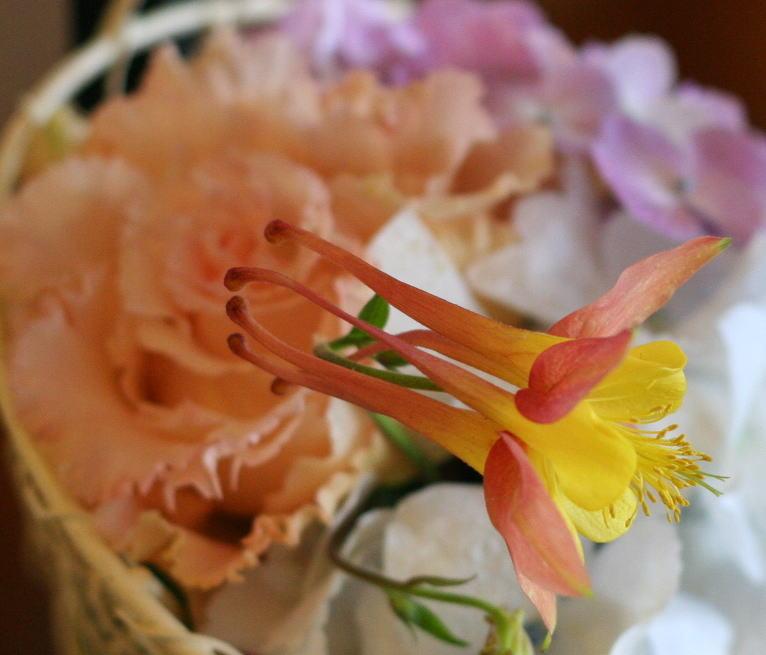 シェ松尾天王洲倶楽部様の装花  苧環_a0042928_230860.jpg