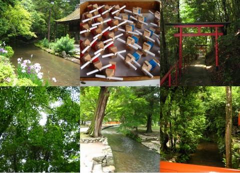 京都4_b0168840_1657588.jpg