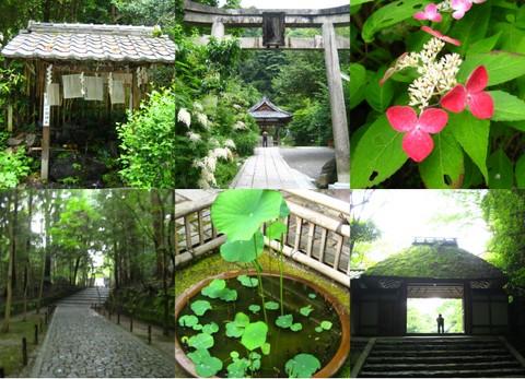 京都4_b0168840_1712544.jpg
