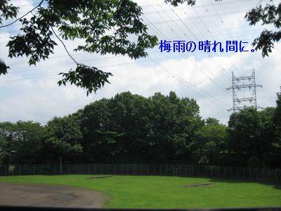 b0148945_1301955.jpg