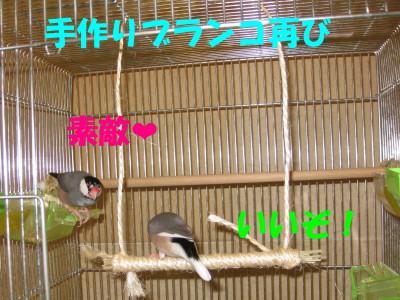 b0158061_2050558.jpg