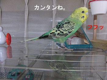 f0196665_0331019.jpg