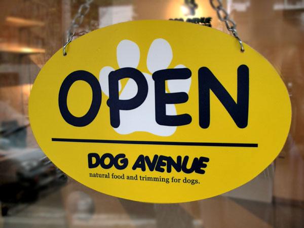 ペットサロン「ドッグアベニュー」が札幌市中央区にオープンしました!_b0186183_7462996.jpg