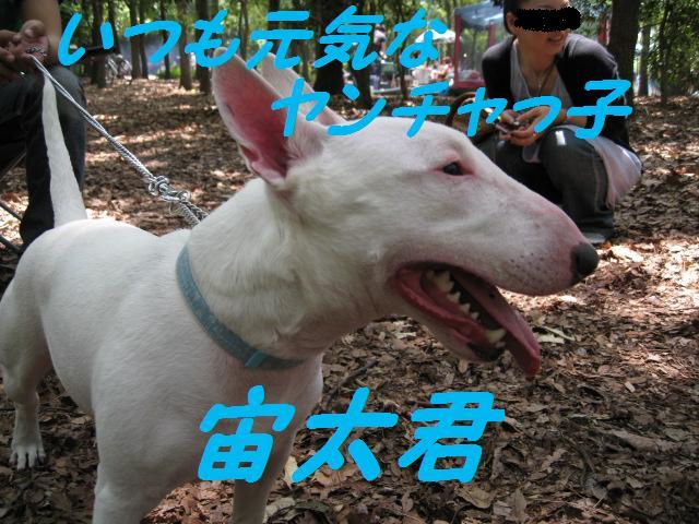 f0180994_022853.jpg