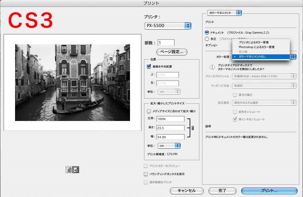 PhotoshopCS4でグレースケール画像をプリントするとき、カラマネなしに出来ない?_f0077521_10403929.jpg