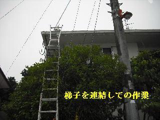 f0031037_18525496.jpg