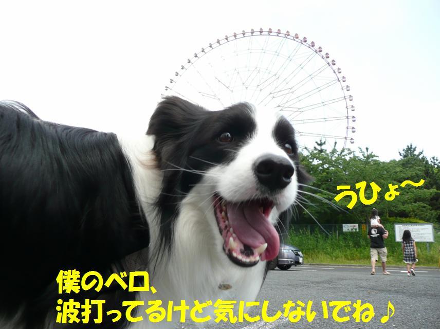 c0147241_0151056.jpg