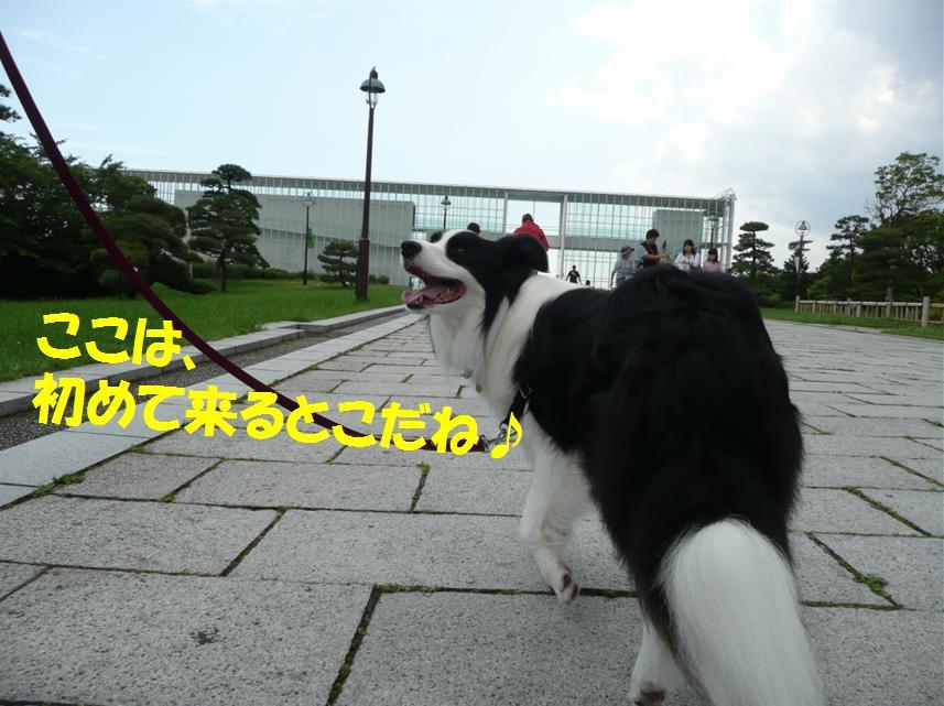 c0147241_0154338.jpg