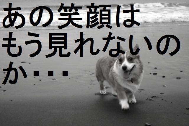 c0173042_15171543.jpg