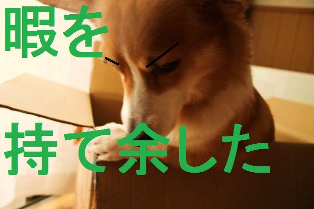 c0173042_15432693.jpg