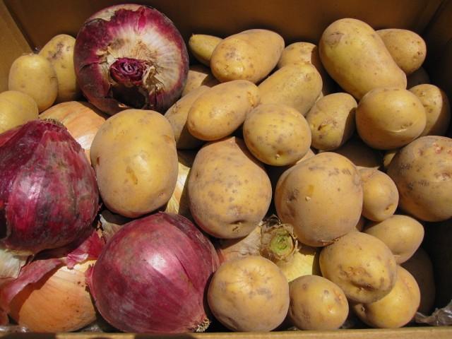 fresh Vegetables_f0073070_13582523.jpg