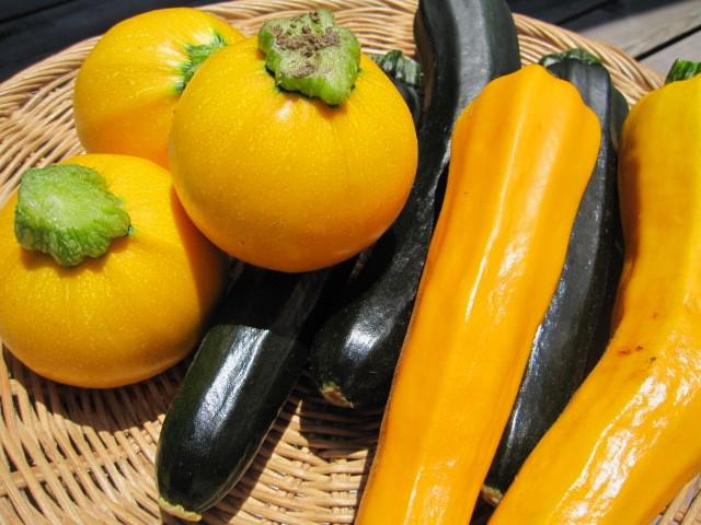 fresh Vegetables_f0073070_13583761.jpg