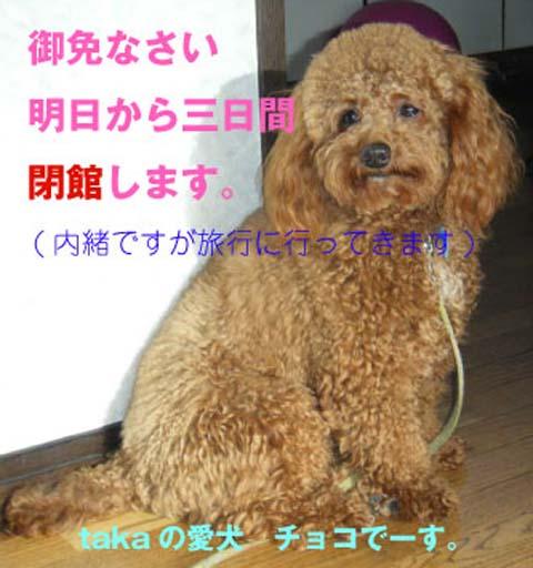 b0190009_1855363.jpg