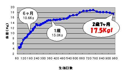 c0113109_157348.jpg
