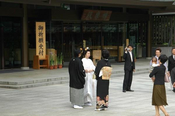 明治神宮の花菖蒲_f0012718_9413610.jpg