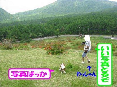 b0185323_1642672.jpg