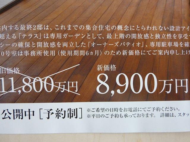 b0035524_1121876.jpg