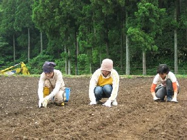6月11日、今日は武生西小学校と一般のオーナーさん_e0061225_11293136.jpg