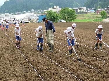6月6日 今日は北新庄小学校3年生が種まき_e0061225_11314929.jpg