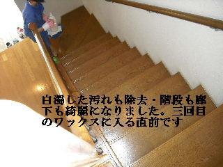 f0031037_1934826.jpg