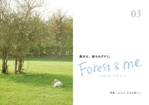 「Forest & me. 」03、できました。_d0028589_21293927.jpg