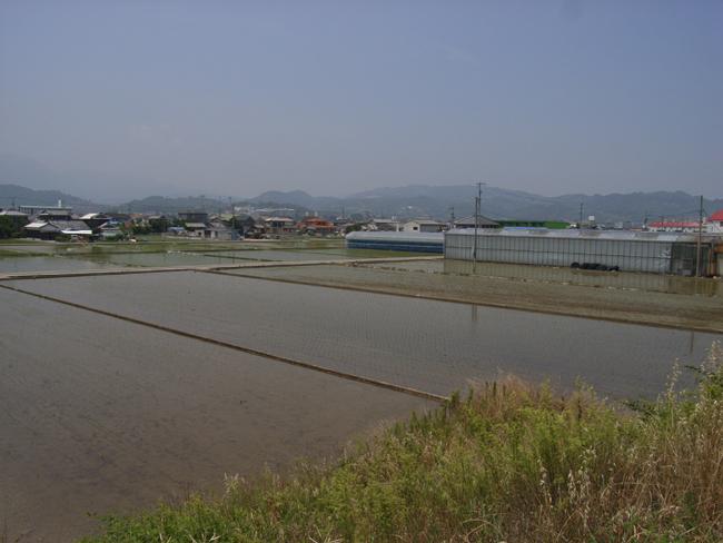 1級河川重信川をおもう_b0186200_9105251.jpg