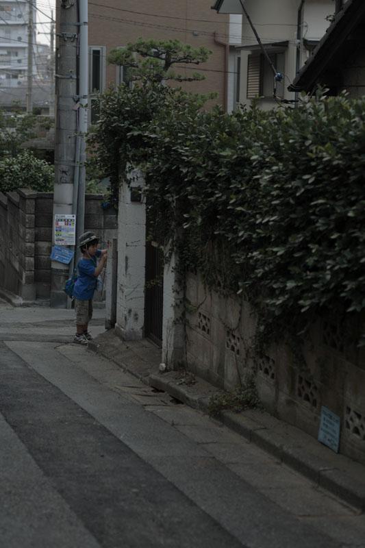 お散歩写真_c0121907_8284610.jpg