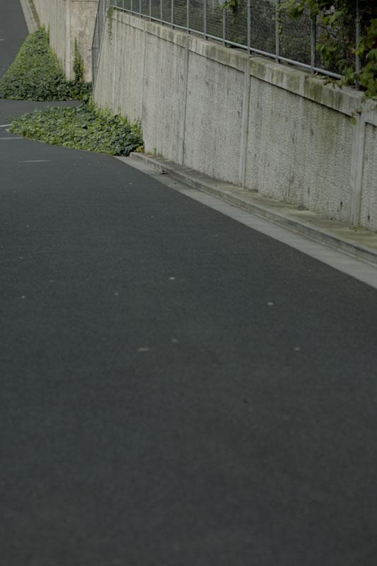 お散歩写真_c0121907_8291588.jpg