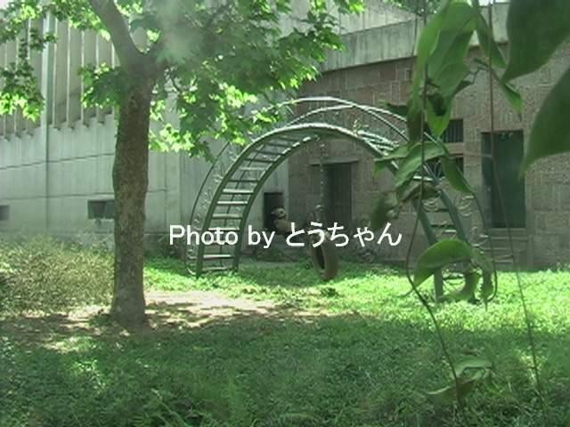 f0079716_22243997.jpg