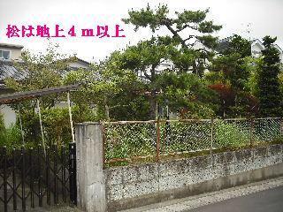 f0031037_20121074.jpg