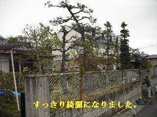 f0031037_20124167.jpg