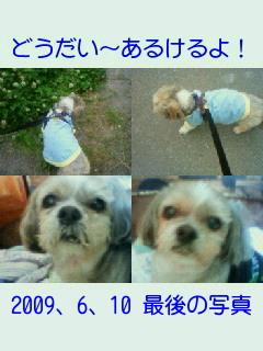 a0108346_7132059.jpg