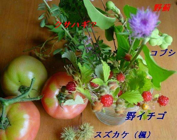 f0179357_12521052.jpg