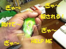d0140668_9574762.jpg