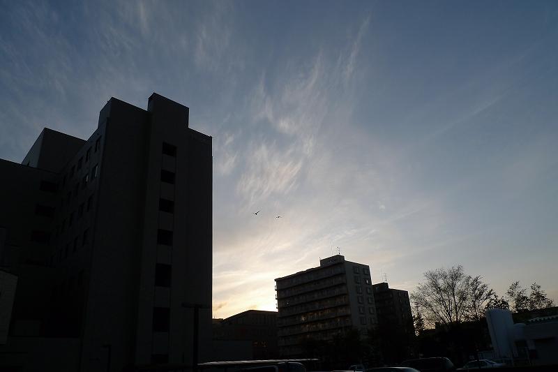 王子総合病院 Leica D-Lux4_d0080785_1015511.jpg