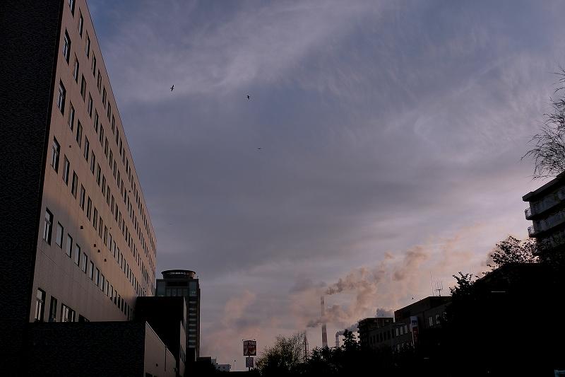 王子総合病院 Leica D-Lux4_d0080785_1024880.jpg