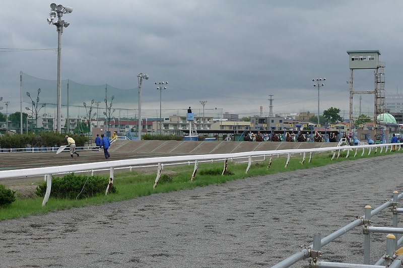 初めて見た ばんえい競馬 Leica D-Lux4 62mm_d0080785_10364096.jpg