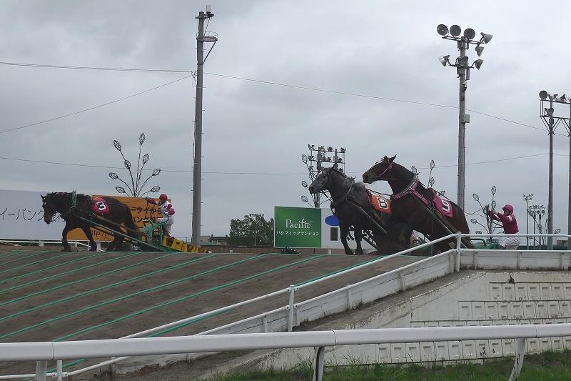 初めて見た ばんえい競馬 Leica D-Lux4 62mm_d0080785_10373474.jpg