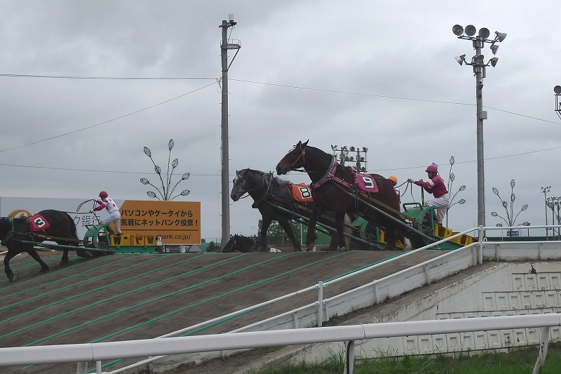 初めて見た ばんえい競馬 Leica D-Lux4 62mm_d0080785_10374574.jpg